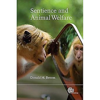 Kännande varelser och djurskydd