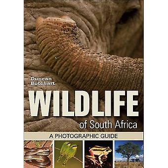 Wildlife of South Africa - A Photographic Guide by Duncan Butchart - 9