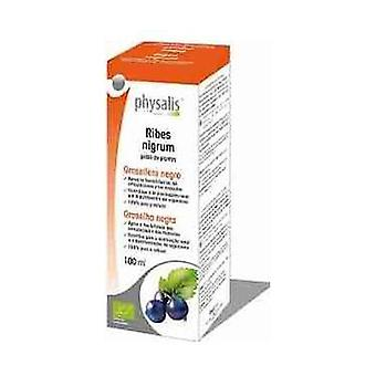 Black Currant Extract (Ribes N.) Bio 100 ml