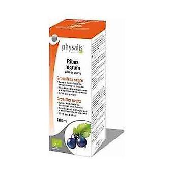 Zwarte bes extract (Ribes N.) Bio 100 ml