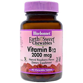 Bluebonnet Nutrition, EarthSweet Chewables, Vitamin B12, Natural Raspberry Flavo