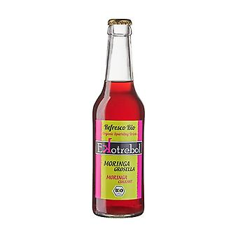 Moringa and redcurrant soft drink 0,33 L