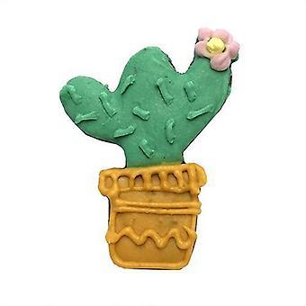 Kaktus (tapaus 12)