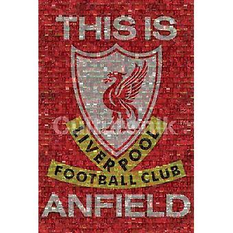 Liverpool mosaik affisch Skriv (36 X 24)
