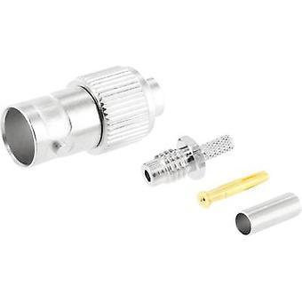 BNC-liitin liitin, suora 75 Ω Telegärtner J01003B0021 1 PCs()
