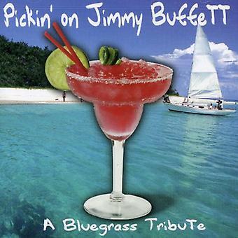 Pickin' on Jimmy Buffett - Pickin' on Jimmy Buffett [CD] USA import