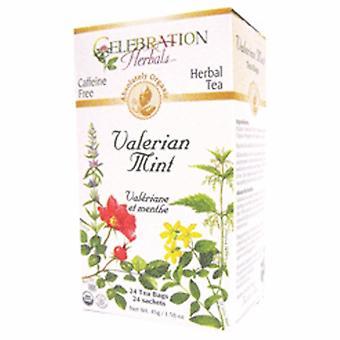 Celebration Herbals Organic Valerian Mint Tea, 24 Bags
