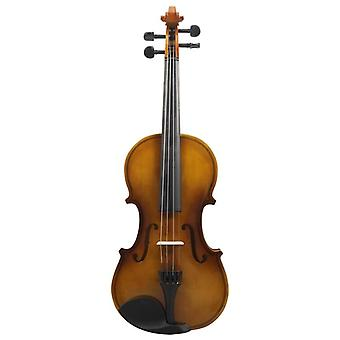 4/4 Full Size Acoustic Violin Fiddle Wood With Case Bow Rosin Violin (wood