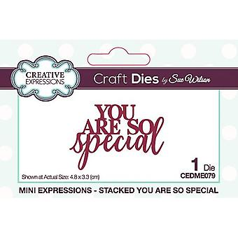 Creative Expressions Mini Expressions Collectie Cutting Dies - You Are So Special
