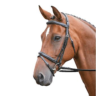 Salisbury Bodenham nahka stitch hevonen suitset