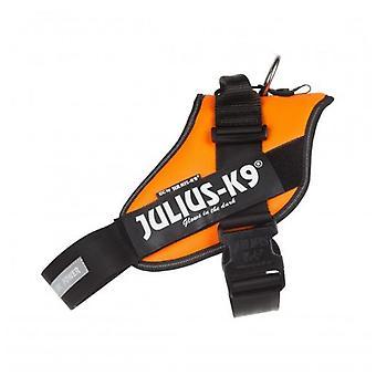 Julius K9 Arnés IDC Power Naranja (Hundar, Halsband, Leads och Selar, Selar)
