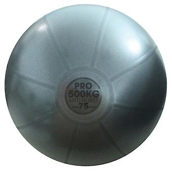 Fitness Mad Studio Pro Anti-Burst 500kg Swiss Ball - Grafiitti - 3 kokoa