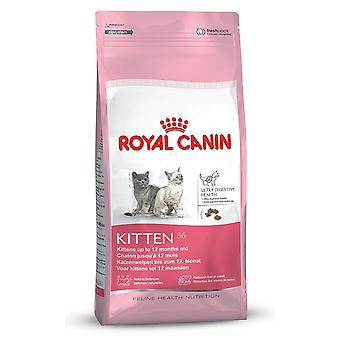 Royal Canin Kitten Kot w wieku od 4 do 12 miesiąca życia żywności 36 suche Mix 400 g