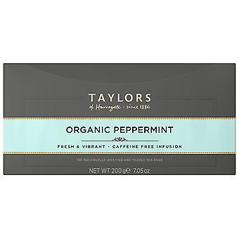 Taylors Of Harrogate Organic Peppermint Enveloped Tea Bags