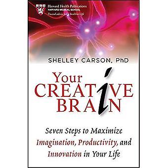 Das kreative Gehirn: Sieben Schritte zur Phantasie, Produktivität und Innovation in Ihrem Leben (Harvard Gesundheit Publikationen) zu maximieren