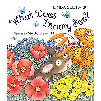 What Does Bunny See? - A Book of Colors and Flowers by Mrs Linda Sue P