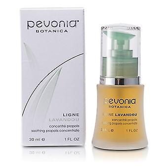 Soothing Propolis Concentrate - 30ml/1oz