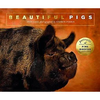 Beautiful Pigs - Portraits of champion breeds by Andy Case - 978178240