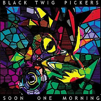 Black Twig Pickers - Soon One Morning [CD] USA import