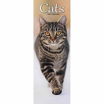 Otter House 2021 Slim Calendar-cats