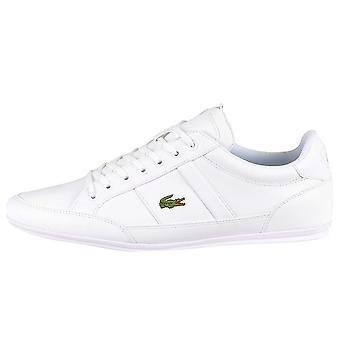 Lacoste Chaymon 741CMA003821G universal all year men shoes