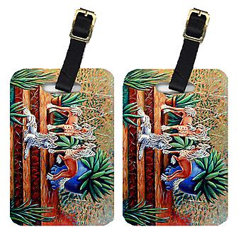 Carolines Treasures  7505BT Pair of 2 Chinese Crested  Luggage Tags