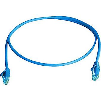 Telegärtner RJ45 Network cable, patch cable CAT 6 U/UTP 3.00 m Blue Flame-retardant, Halogen-free