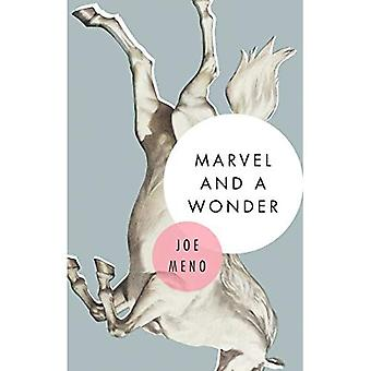 Marvel and a Wonder : A Novel