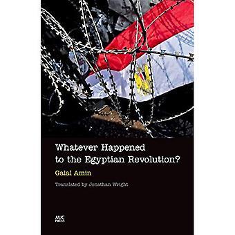 Qualunque cosa sia successa alla rivoluzione egiziana?