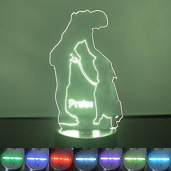 Hunden trening ros farge skiftende LED akryl lys