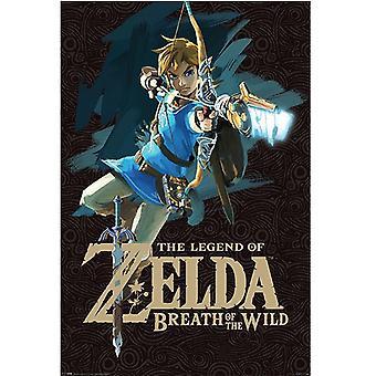 Zelda, Maxi Poster - Link (Breath of the Wild)