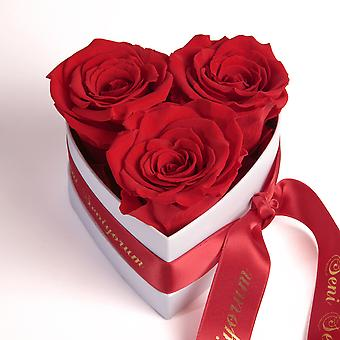 Seni Seviyorum Roses Heart Box 3 Eternal Roses in Red Durable 3 Years