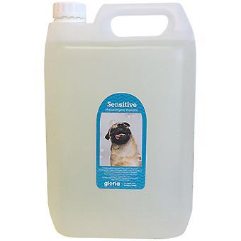 Gloria Pets Shampoo Gloria Hypoallergeeninen herkkä iho 5L