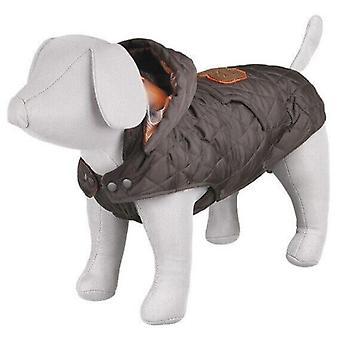 トリクシー チェルヴィーノ ブラウン層 (犬、犬の服、コート、ケープ)