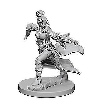 Pathfinder Deep Cuts Unpainted Miniatures Elf Female Sorcerer (Pack of 6)