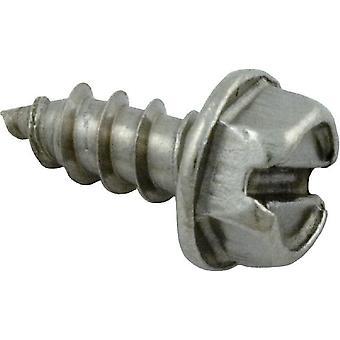 Pentair 273071 Stainless Steel Flat Head Screw