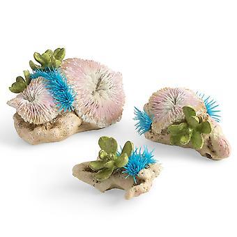 BiOrb Plate Corals & Button Polyp Set