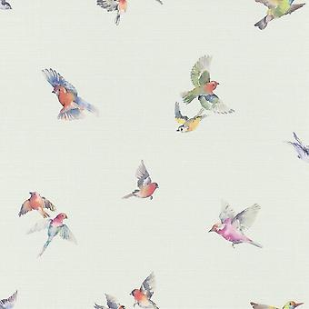 Duck Egg Birds Wallpaper