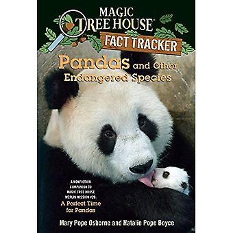 Panda's en andere bedreigde soorten: A non-fictie Companion to Magic Tree House #48: een perfecte tijd voor Panda's (Magic Tree House feit Tracker