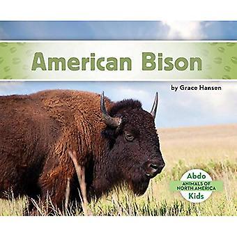 American Bison (Animals of North America)