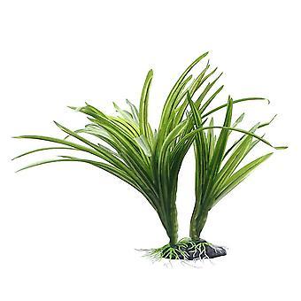 Fluval Striped Acorus Plant 25cm