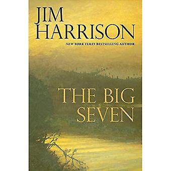 Die großen sieben (Faux Mystery)