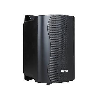Slimme akoestiek Bgs25t 100V zwarte luidsprekers (paar)