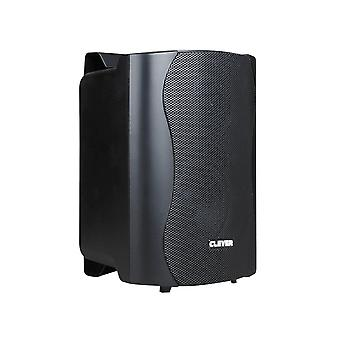 Clever Acoustics Bgs25t 100v Black Speakers (pair)