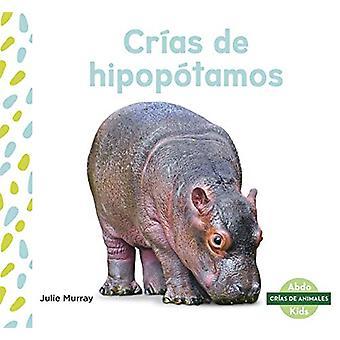 Crias de hipopotamos (Hippo Calves) by Julie Murray - 9781644941270 B