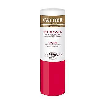 Organic anti-aging lip treatment 4 g
