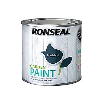 Ronseal Garden Paint Black Bird 250ml RSLGPBLKB250