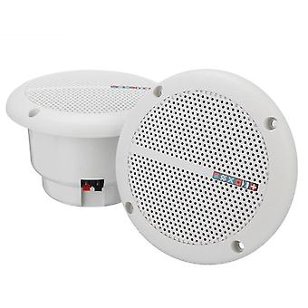 Marine Boat Ceiling/ Wall Speakers/loudspeakers/amplifier For Kitchen,