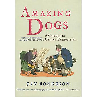 Amazing Dogs  A Cabinet of Canine Curiosities by Jan Bondeson