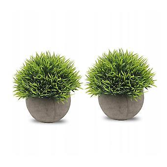 Grüne Pflanze Bonsai 2pcs